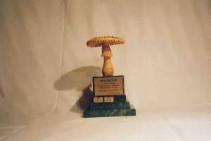 Nejsvěžejší houbař